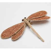 Straw Brown Dragonfly